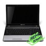 Ремонт ноутбука Packard Bell EasyNote TM82